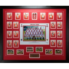 ST GEORGE DRAGONS PREMIERS 2010 LIMITED EDITION FRAMED