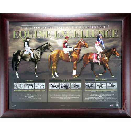 HORSE RACING MELBOURNE CUP 150 YEARS CELEBRATION FRAMED