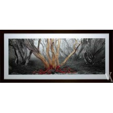KEN DUNCAN FRAMED & SIGNED SCENIC SIGNATURE SERIES SNOWY RIVER GUMS
